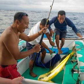 День в Индийском океане