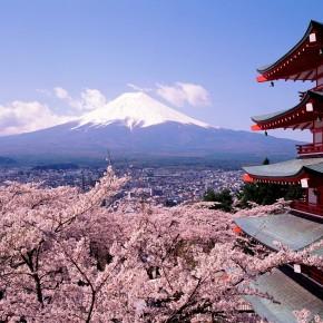 Отдых в Японии у наших друзей.